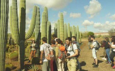Voyage d'étude au Maroc pour les BTS Productions Horticoles